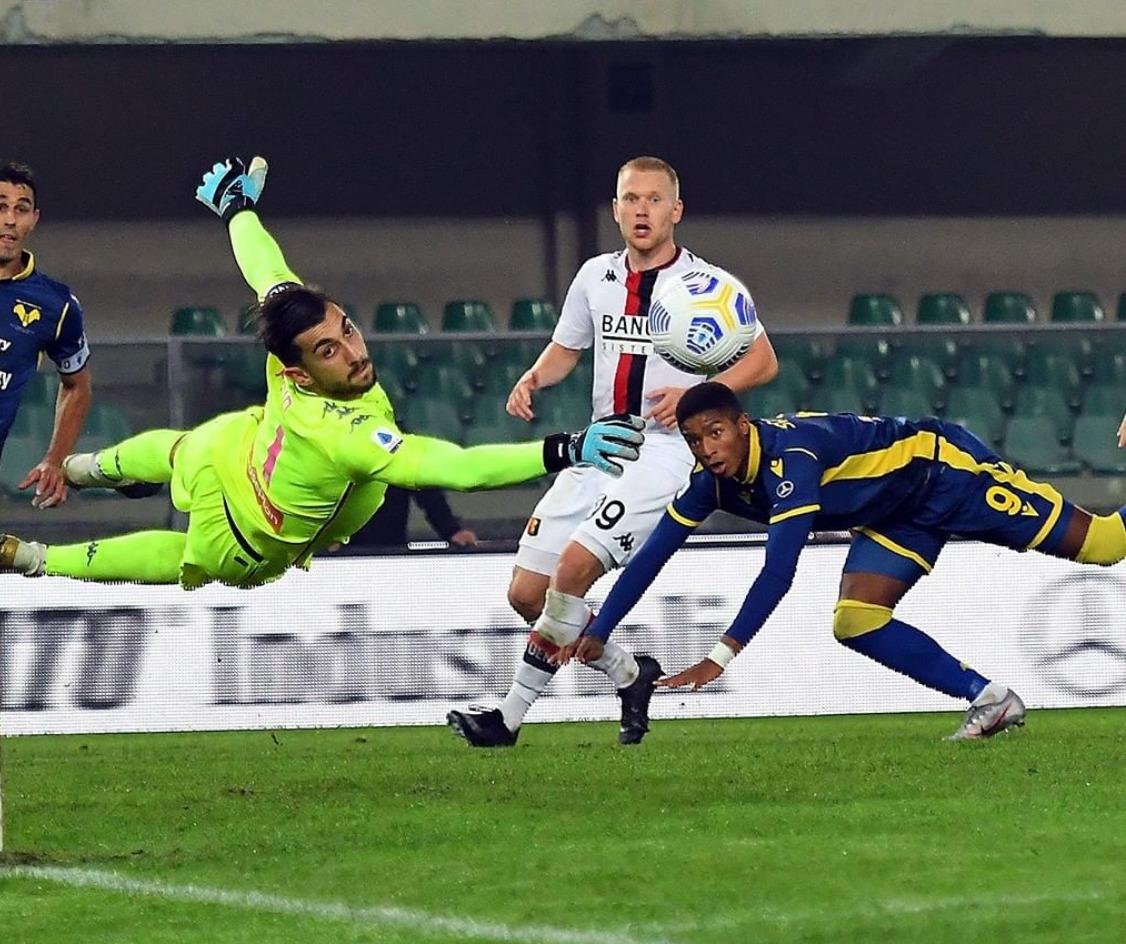Salcedo Perin Hellas Verona-Genoa